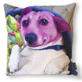 Dog throw pillow FAFFIE purple velvet pillow case
