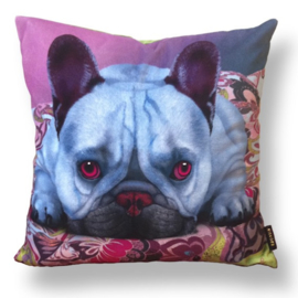 Dog throw pillow BLEU velvet pillow case