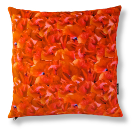 Sofa pillow Red velvet cushion cover POPPY