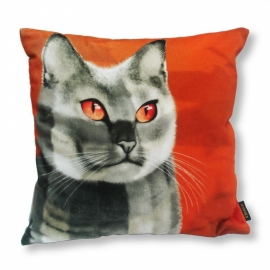 Cat throw pillow CALICO Orange grey velvet cushion cover