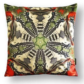 Cushion cover velvet QUEEN PAGE BUTTERFLY