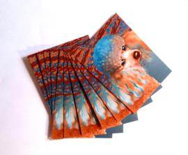 Sierkussen LADY blauw-oranje fluwelen kussenhoes