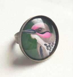 Cabochon ring bird PINK CHEEK WOODPECKER