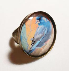 Cabochon ring bird BLUEFINCH