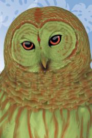 TROPICAL OWL XL