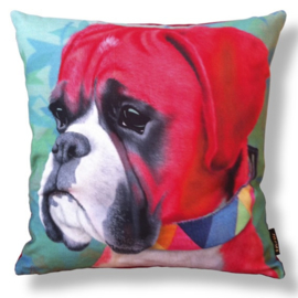 Dog throw pillow BACO red velvet pillow case