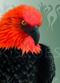 FIRE EAGLE XL