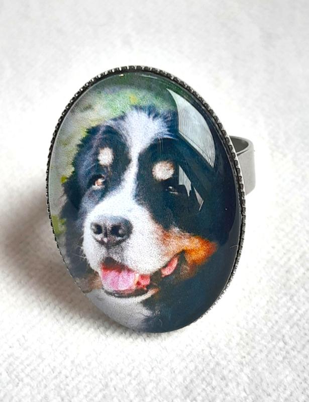 Voorbeelden ringen met eigen huisdier erin