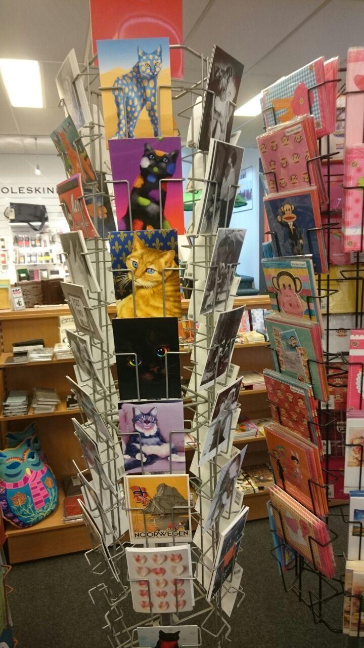 Cat postcards Natuurmuseum Brabant