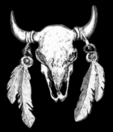 P130 - Large PIN - Buffalo Skull With Feathers