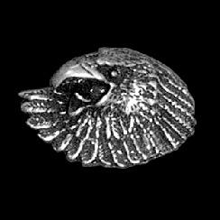 P141 - PIN - Screaming Eagle Head