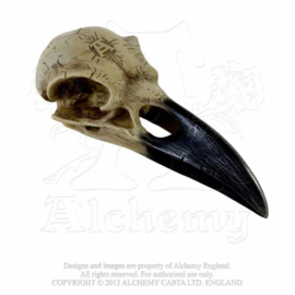 Alchemy England - Larger than life Raven Skull - Corvus Alchemica