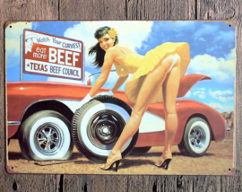 Watch your Curves - Metal Plate / Tin Sign - Vintage