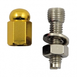 TrikTopz with License Plate Mounts - Valve Caps - Golden Alloy Hex Domed