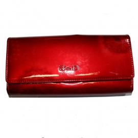 Wallet with Snap Button Closure - Red Dead Dandelions