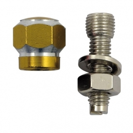 TrikTopz with License Plate Mounts - Valve Caps - Golden Alloy Twotone Hex