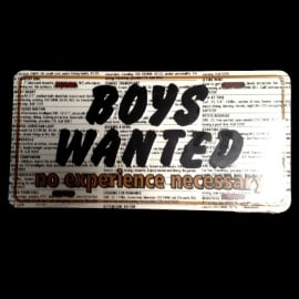 License Metal Plate / Tin Sign - 3D - Boys Wanted. No Experience Necessary