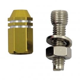 TrikTopz with License Plate Mounts - Valve Caps - Golden Alloy Twotone Hex Straight