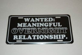 License Metal Plate / Tin Sign - WANTED: Meaningful Overnight Relationship