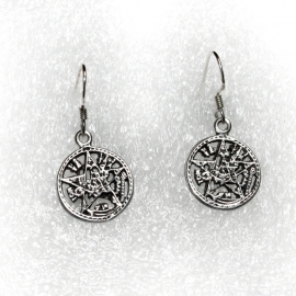 Anarchy earrings [SILVER]