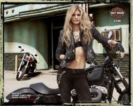Harley-Davidson - Genuine - Coaster Set (4p)