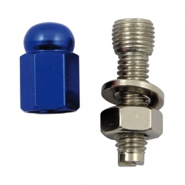 TrikTopz with License Plate Mounts - Valve Caps - Blue Alloy Hex Domed