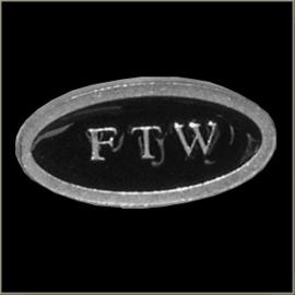 P243 - PIN - Metal Badge - FTW