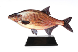 Vistrofee Real Fish – Brasem 18 cm