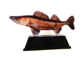 Vistrofee Real Fish – Snoekbaars 20 cm