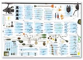 Knopenposter Karpervissen