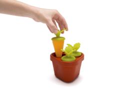 Veggie Pop IJslollyvorm Groente Fruit IJsje