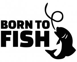 Sticker 'Born to fish' - Zwart