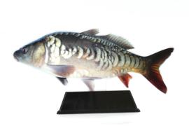 Vistrofee Real Fish – Karper 17 cm