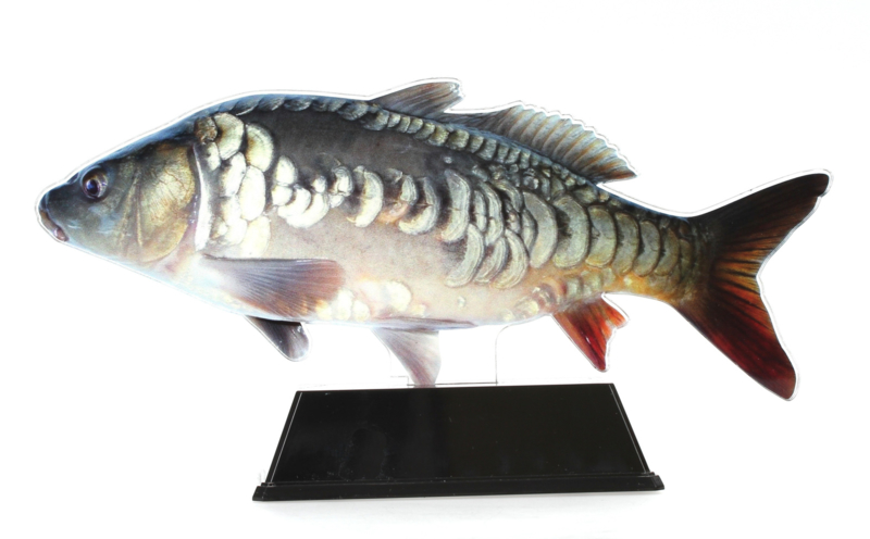 Vistrofee Real Fish – Karper 20 cm