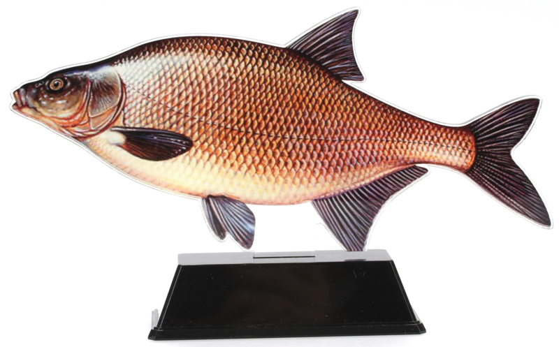 Vistrofee Real Fish – Brasem 24 cm