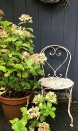 Oud Frans ijzeren witte tuinstoel - terrasstoel - stoel