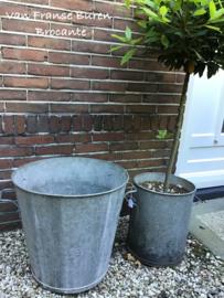 Oude hoge tapstoelopende zinken ton - kuip - ketel