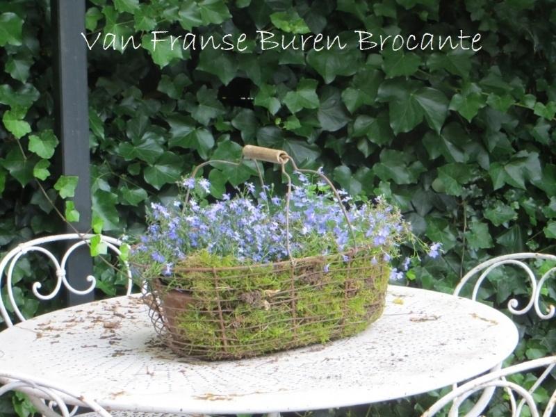 Franse plukmand van draadijzer