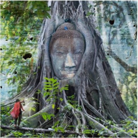 Boeddha, IGP8897 Maïlo