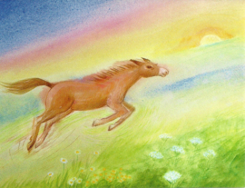 Paard, Janneke Rosenbrand