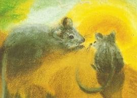 Muizen in de zon, Dorothea Schmidt