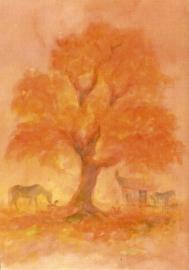 Herfstboom, David Newbatt