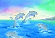 Dolfijnen, Baukje Exler