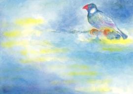 Vogel op reis, Jula Scholzen Gnad