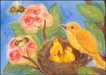 Vogelnest, Heike Stinner