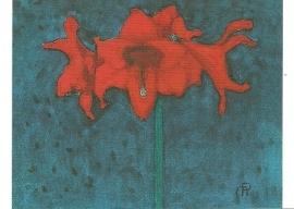 Amaryllis, Piet Mondriaan