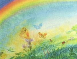 Vlinders, janneke Rosenbrand