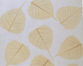 Olino Paperworks, Gastenboek mulberrypapier/bodhiblad naturel