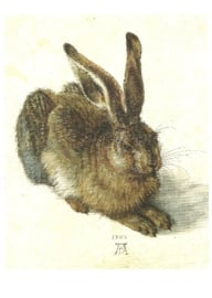 De haas, Albrecht Dürer