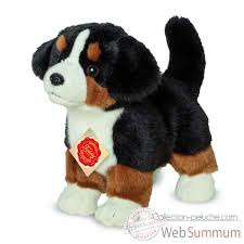 Berner sennenhond (23 cm)